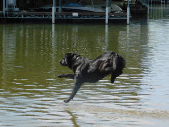 Skimming Water by GrawNexusTheory