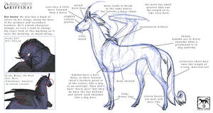 Griffinai Drawing Guide by Starhorse