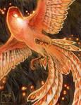 Phoenix by Starhorse