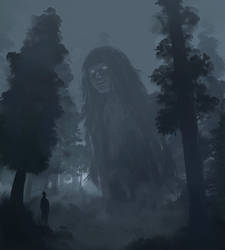 Foggy forest by chalii