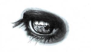 Eye Study by CatherineWhite