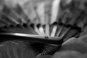 Folding Fan in Black and White by Oiseauii