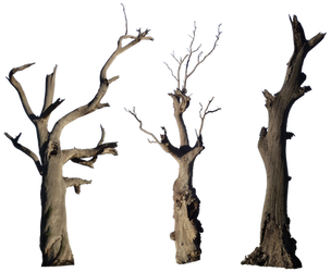 Dead Tree Pack 001 - HB593200 by hb593200