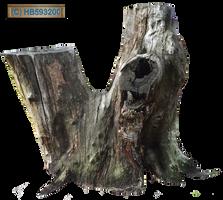 Tree Stump 002 - HB593200 by hb593200
