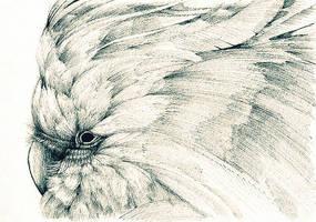 Distortion by aleks-klepnev