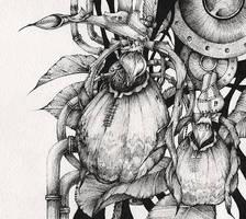 Cypripedium calceolus by aleks-klepnev