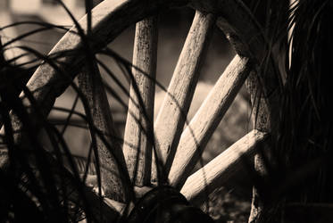 Old wheel by jazzypao