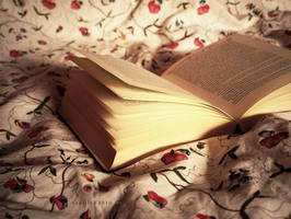 morning reading by vanerich