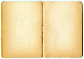 Paper texture 028 by LisaGorska