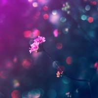 in my dreams by Aparazita-R