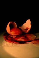 Dead Birds by Mischx