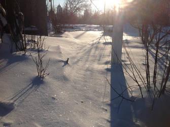 shiny snow by Magen-ta