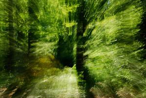 pathways by lioncourt7