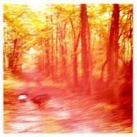 Path 3 by lioncourt7