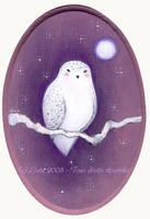 Little Owl by Neyrelle
