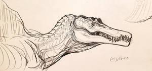 Spinosaurus by Chishio-san