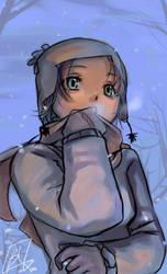 junk- winter by borammy