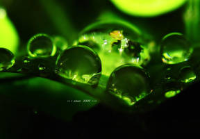 greenlamps by sinanTR