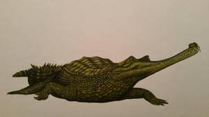 Gavialis pachyrhynchus by spinosaurus1