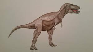albertosaurus sarcophagus by spinosaurus1