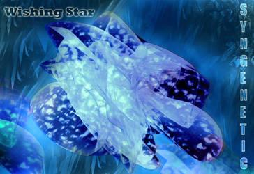 Wishing Star by Syngenetic