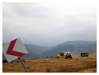 Hay Supply by emrebuyukozkan
