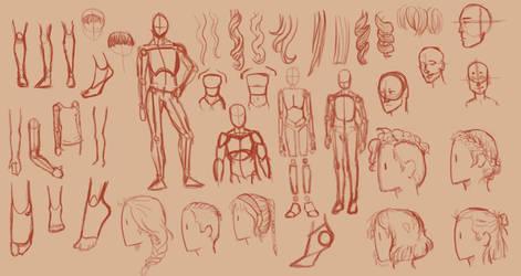 Human Anatomy Practice by icedragon78970