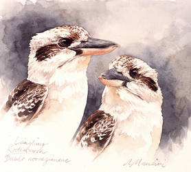 Kookaburras by RobertMancini