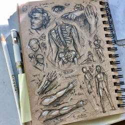More anatomy of which is messy by ArtRabbitIllustrates
