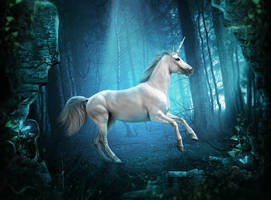 The Unicorn by Whendell