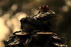 Money Frog by varunabhiram