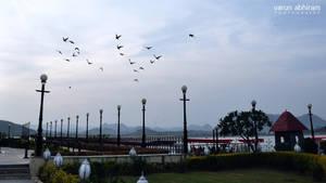 Birds at Dusk by varunabhiram