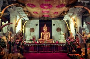 Temple of the Tooth by varunabhiram