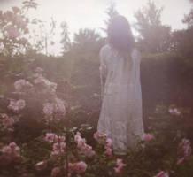 rose garden of sorrow by deer-o