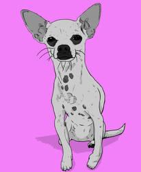 Nacho the Chihuahua by BlackSnowComics