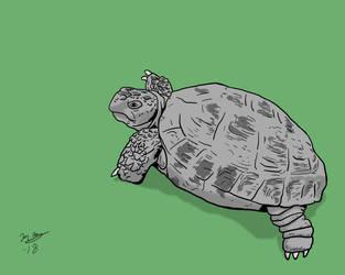 Koopa by BlackSnowComics