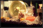 Portrait of a Hamster by shubat