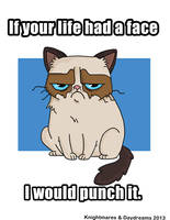 Grumpy Kitteh by Shanachie-fey
