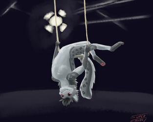 Foxtober Day 1: Buntoh the acrobat by SuperFrodo95