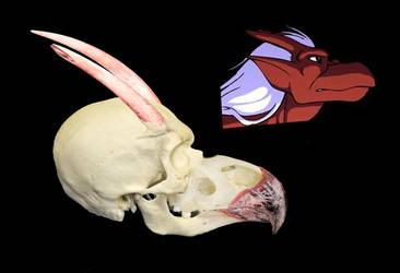 brooklyn's skull by megamike75