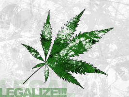 legalize by kalteis