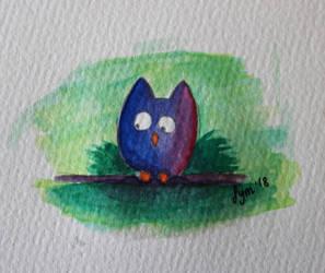Little owl by Billie-phoebe