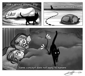 Let sleeping humans lie... by weenie
