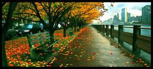 Roosevelt Island Foliage by otisagabey