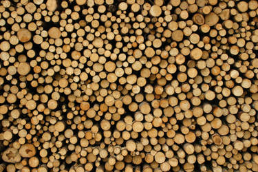 Wood Pile 118518 by StockProject1