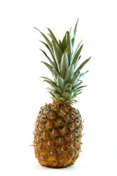 Lone Pineapple 6724794 by StockProject1