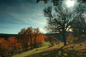 Autumn Hills 314327 by StockProject1