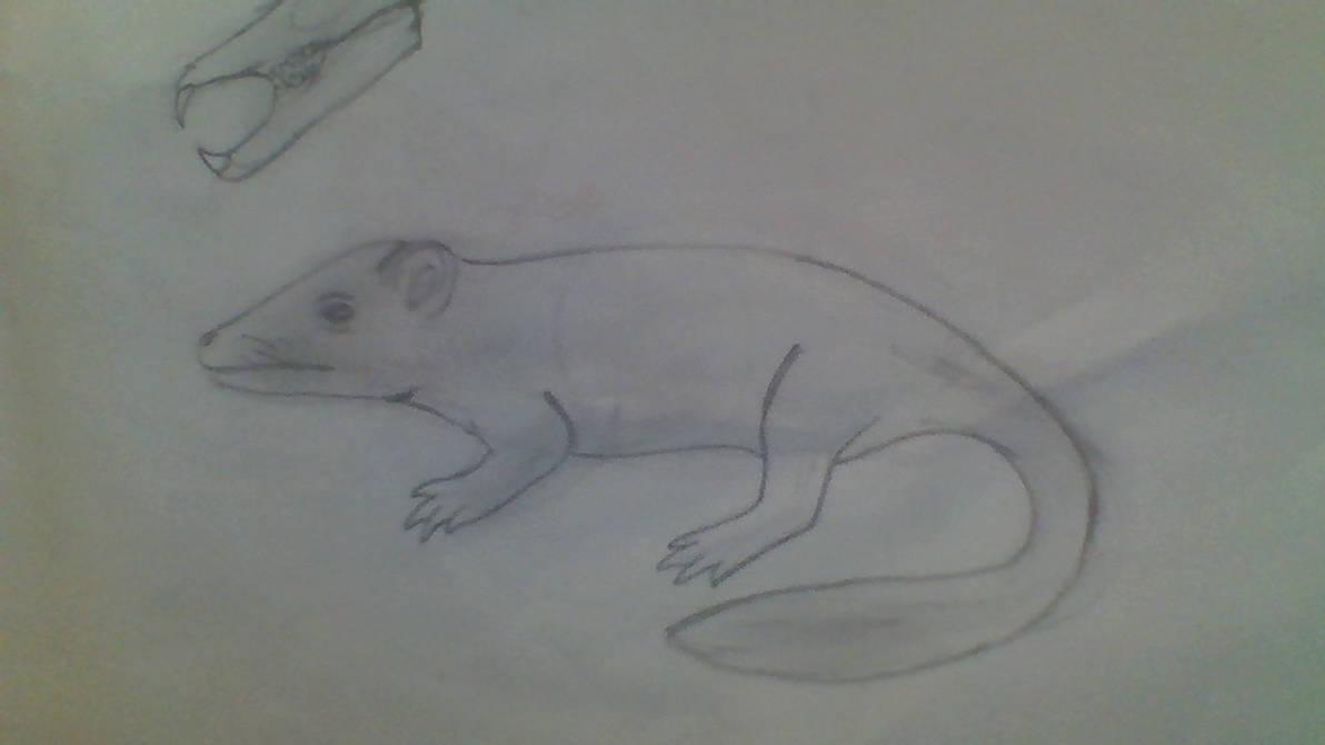 A new beginning #1 Crocodile rat by ghaztmaster2