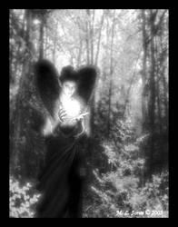 Morning Heart - Black and White by MyriamSedai