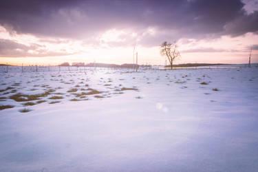 Winterdays by MikailDesign